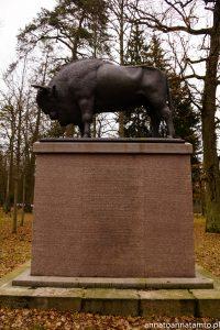 Pomnik żubra. Upamiętniający polowanie cara Aleksandra II 6 i 7 X 1860r