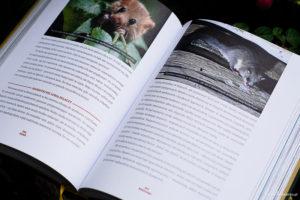 Adam Wajrak - książkowe fotografie