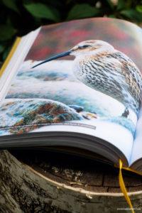 Wielka Księga prawdziwych tropicieli- piękne zdjęcia